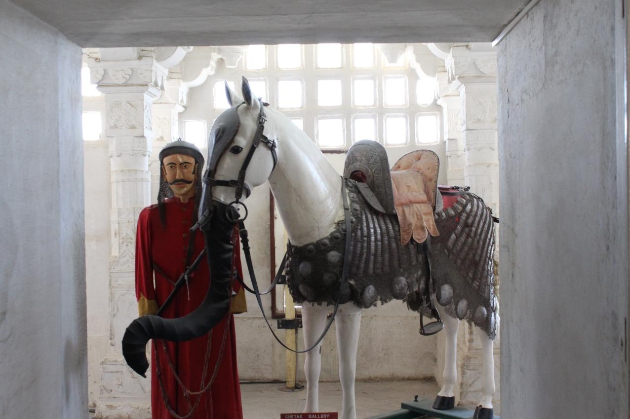 Chetak! (Pratap Singh's Horse)
