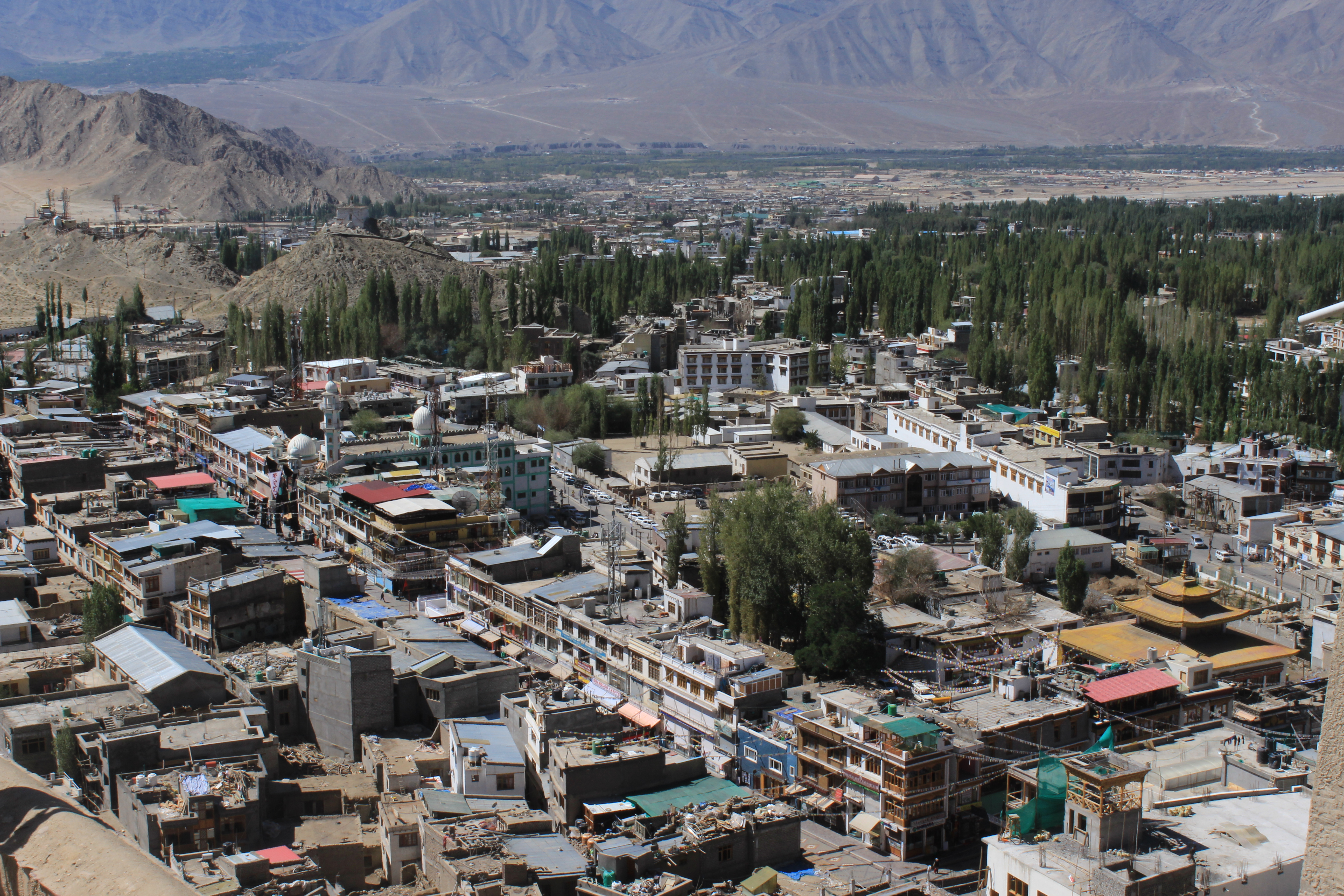 View of Leh Market from Leh Palace